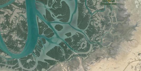 فروش ۲هکتار زمین در نزدیکی جنگل حرا قشم با ویو جنگل حرا
